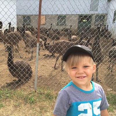 activites-ferme-emeu